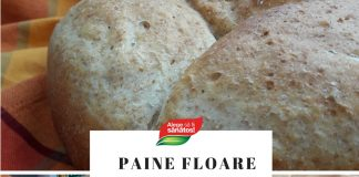 Paine de casa tip floare cu faina integrala