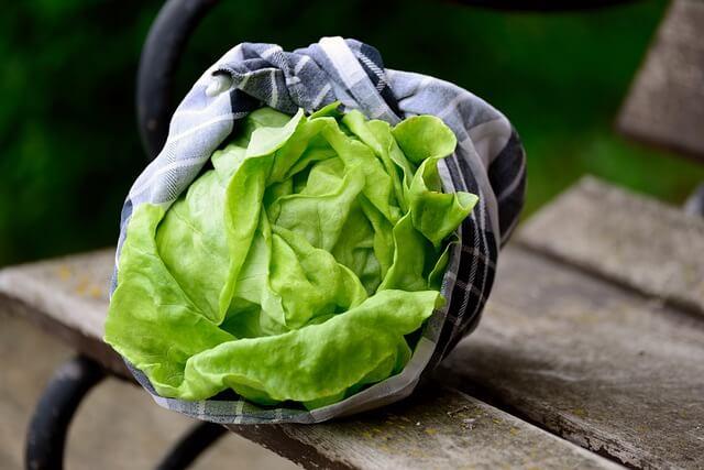legume cu frunze verzi