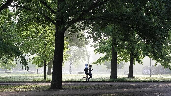 alergat in parc jogging