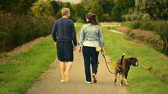 plimbat cainele in parc