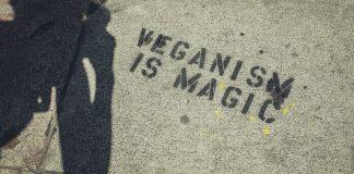 a fi vegan