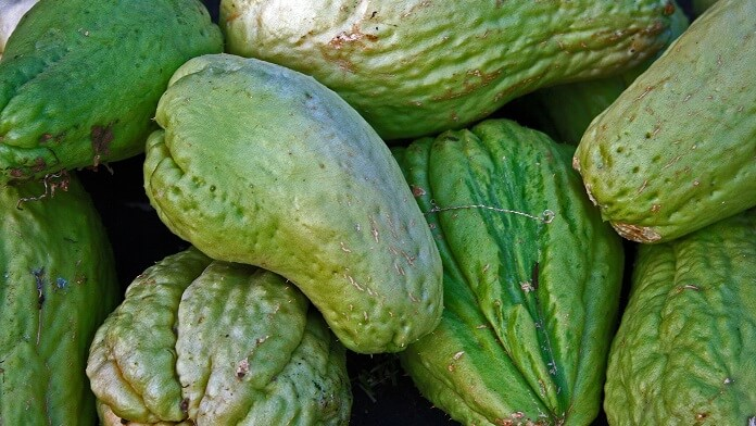 dovlecel chayote