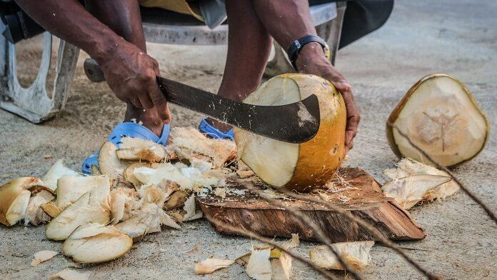 taiere nuci de cocos