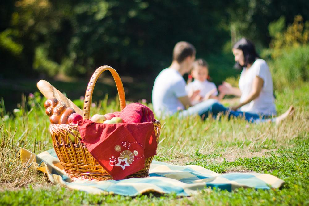 picnic în aer liber cu familia