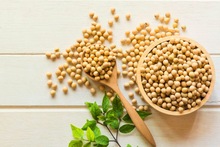 Istoria minunatelor boabe de soia