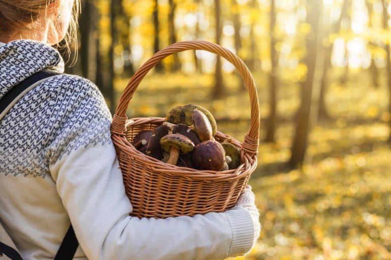 Cinci alimente din care să-ți iei necesarul de Vitamina D